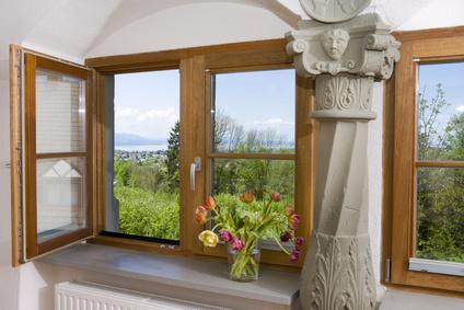 Fenster pflegen richtig gemacht
